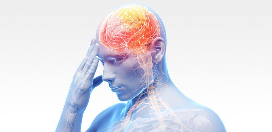 В-лимфоциты больных рассеянным склерозом убивают нейроны стимулируя апоптоз