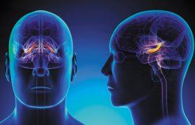 Проявления заболеваний центральной нервной системы