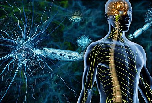 Этиология и патогенез демиелинизирующих заболеваний