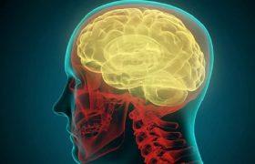 Ученые обнаруживают мозговой сигнал, определяющий, была ли слушателю понятна речь