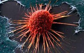Рак мозга вызывают вирусы