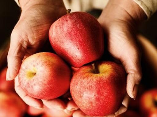 Почему нужно обязательно есть яблоки