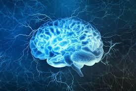 В Берлине пройдет крупнейший конгресс по неврологии