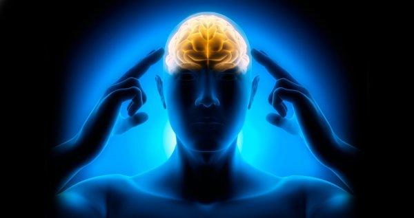 Израильские ученые нашли способ считывать воспоминания мозга умершего человека