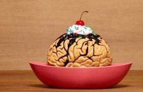 Ученые обнаружили в желудке человека отдельный мозг