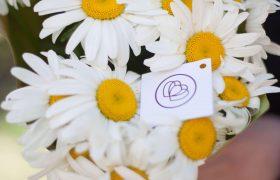 Цветотерапия в психологии: как букеты влияют на человека