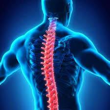 Спинальный инсульт: симптомы и причины