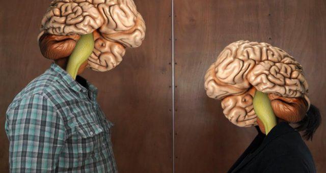 Мозг людей, страдающих депрессиям, отличается необычным строением
