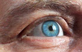 Немецкие эксперты: можно ли ослепнуть от стресса