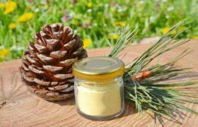 Что такое сосновая пыльца: как добывают, где используют и какие полезные свойства несет продукт