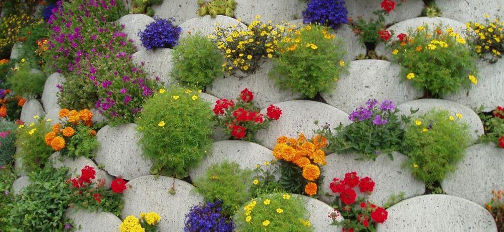 Ландшафтный дизайн цветов
