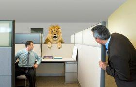 Как избежать стресса на работе