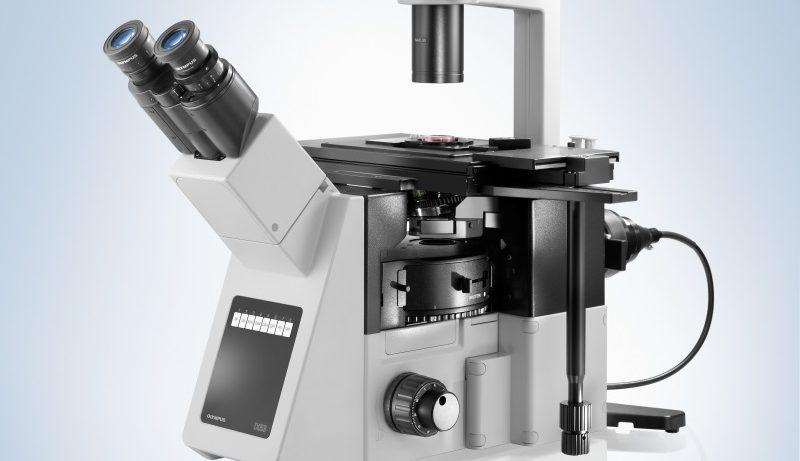 Olympus IX53 – многофункциональное устройство для изучения живых организмов
