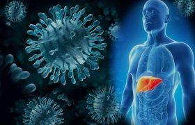 Гепатит В — не приговор