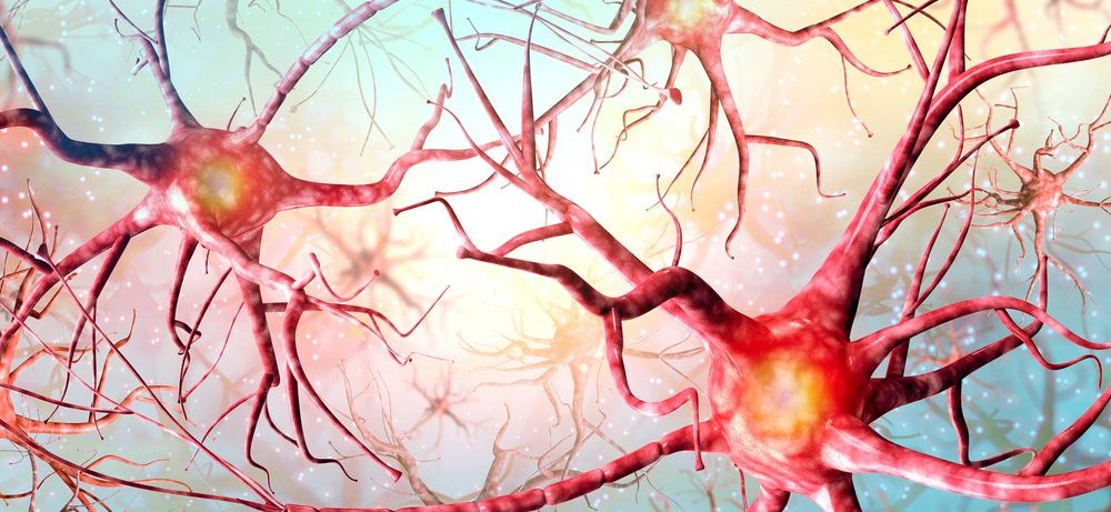 Стимуляция блуждающего нерва улучшает способности к языкам