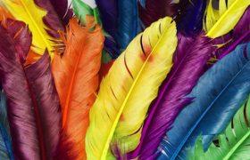 Особенности проведения цветоимпульсной терапии