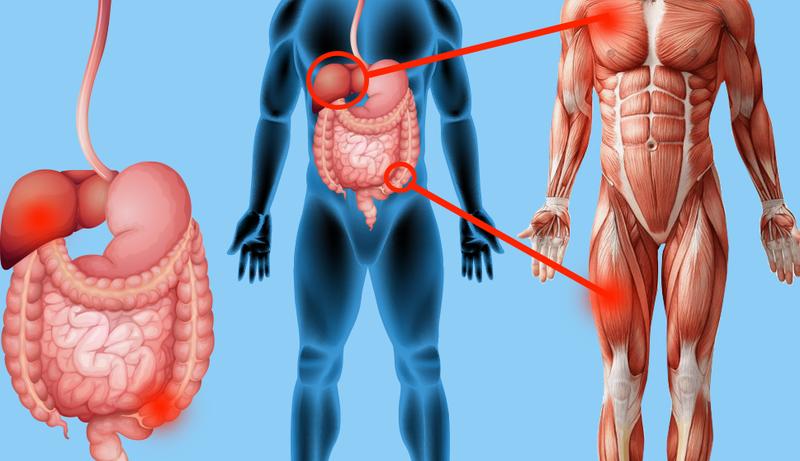 Боль в мышцах укажет на проблемы с органами