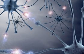 Загадки шизофрении
