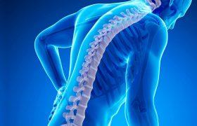 Причины, почему у вас болит спина: способы решения проблем