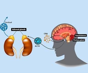 Адреналиновая усталость: тревожные симптомы