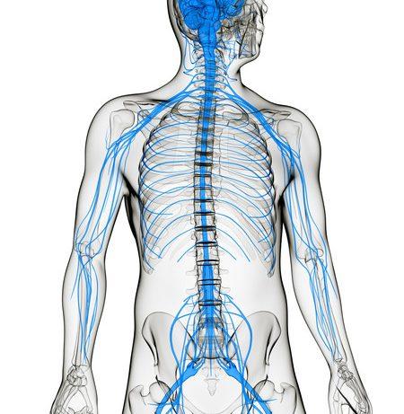 Помощники при неврите: мазь от воспаления нерва