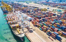 Налаживание экспорта в Нидерланды